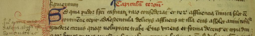 MS Lat 89(1) - Mary Magdalen encounters the pleasures of the flesh