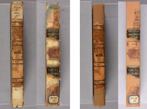 Daubeny books before and after conservation